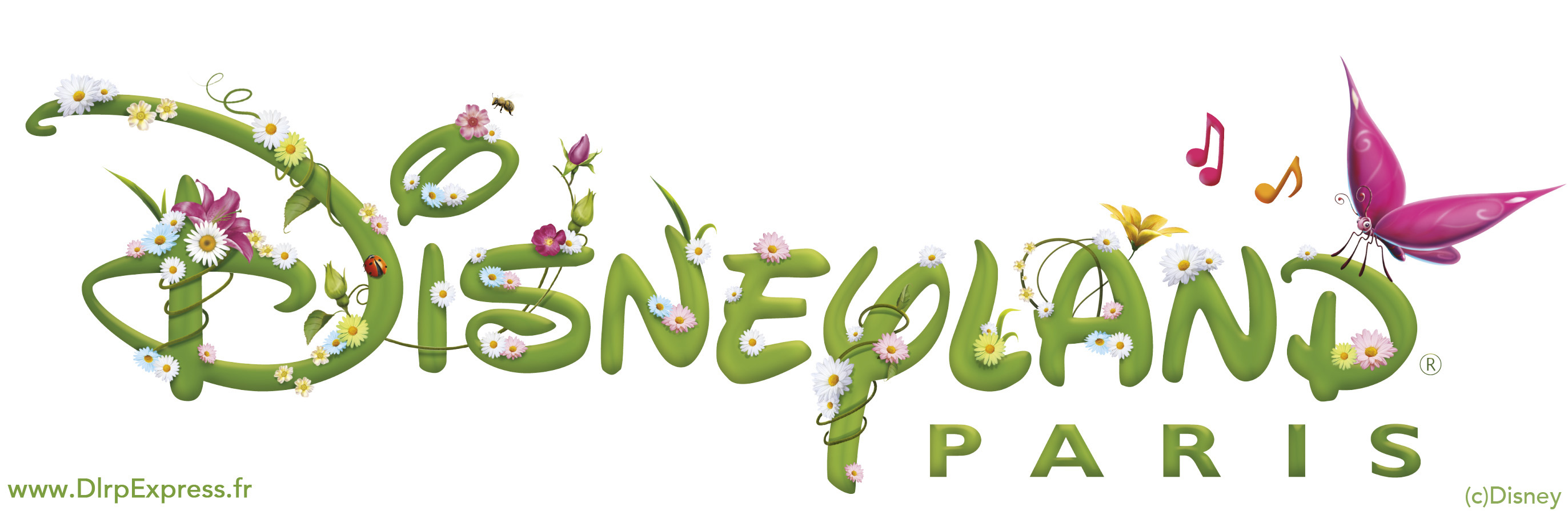 Disneyland Paris logo with flowers and butterflies.