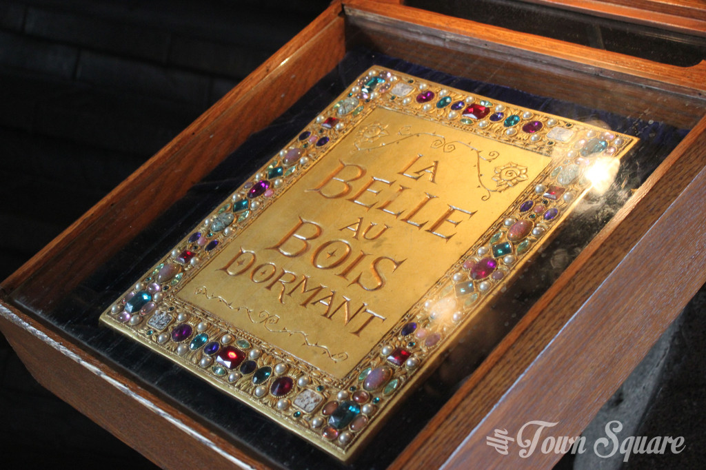 Sleeping Beauty Book in Disneyland Paris