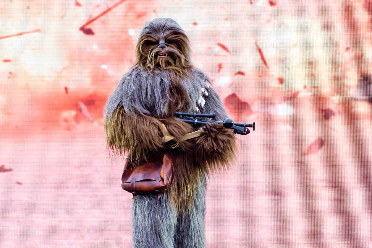 Chewbacca at Star Wars Day 2018