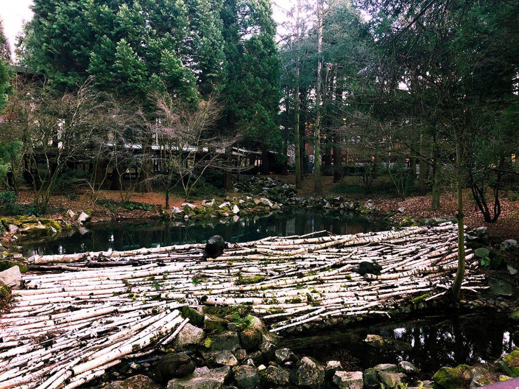 The Beaver Den at Disney's Sequoia Lodge - Disneyland Paris