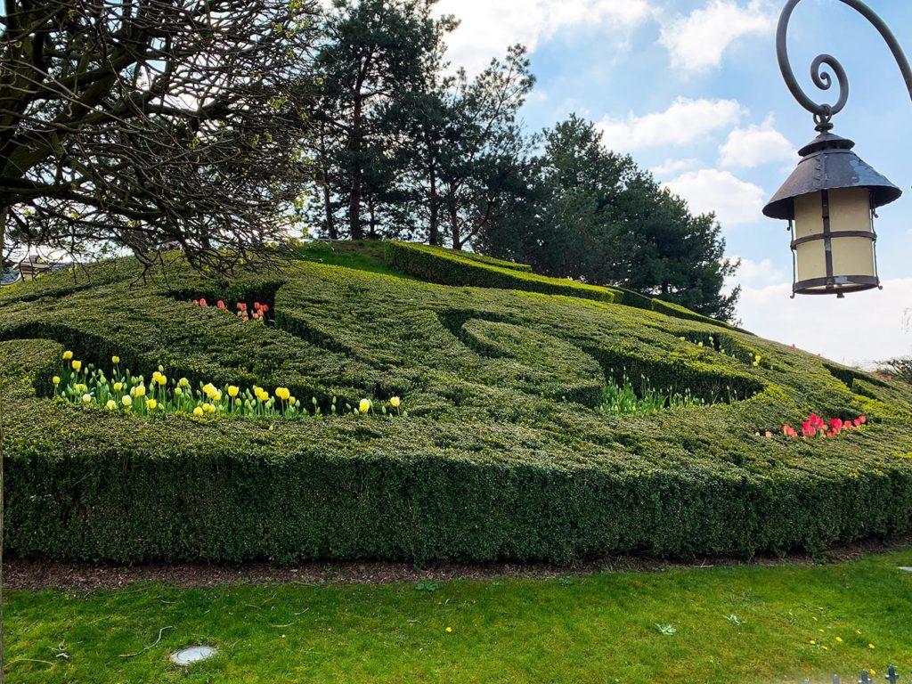 Fleur de Lys at Disneyland Paris