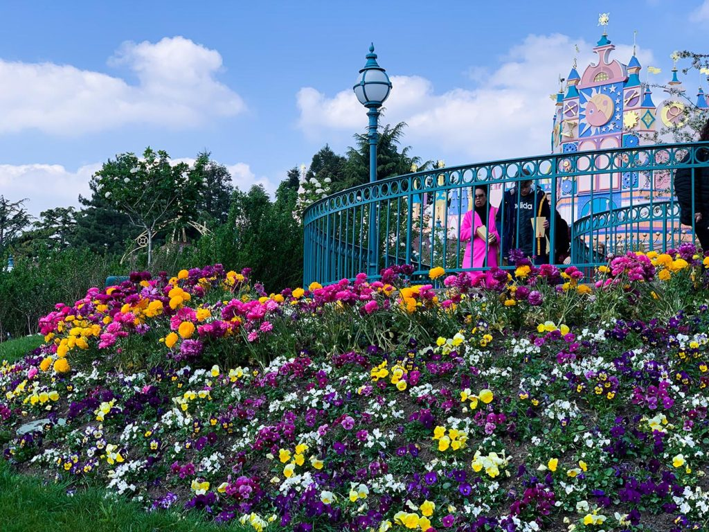 """Tulips at """"it's a small world"""" in Disneyland Paris"""