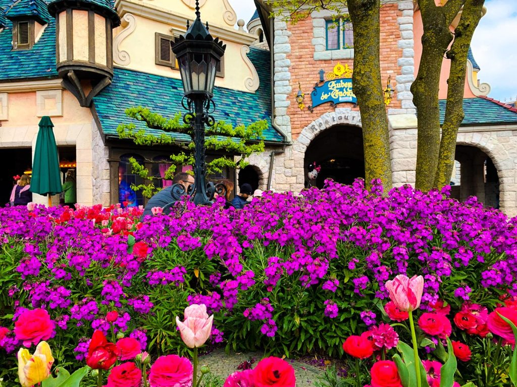 Tulips by the Auberge de Cendrillon at Disneyland Paris